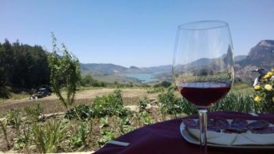 Ruta Vino Ronda Málaga