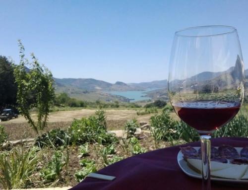 """Las jornadas """"Costa del Sol 365 Wine Experiences"""" cubren todas sus plazas en 48 horas."""